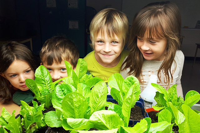 Students with lettuce