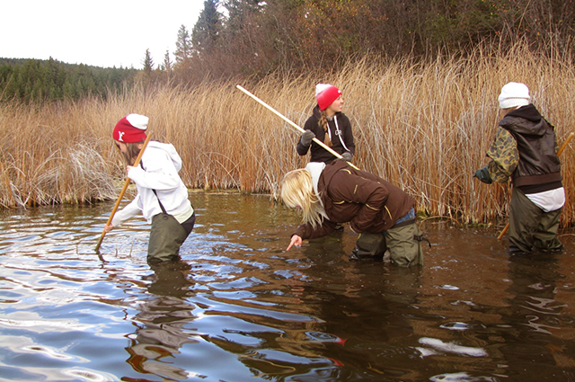 McQueen lake Forestry and Environmental Studies Camp