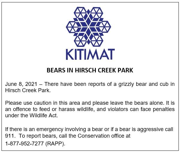 Bears in Hirsch Creek Park